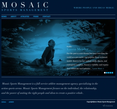 Mosaic Management